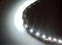 Лента светодиодная белая 3528 30см водонепроницаемая